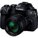 DC-G99H-K パナソニック ミラーレス一眼カメラ「LUMIX DC-G99」レンズキット Panasonic