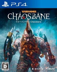 【PS4】ウォーハンマー:Chaosbane オーイズミ・アミュージオ [PLJM-16483 PS4 ウォーハンマーカオスベイン]