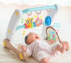 うちの赤ちゃん世界一 スマート知育ジム&ウォーカー ピープル
