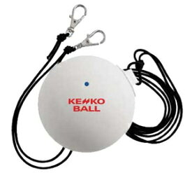 TSV-WB ケンコー(KENKO) ケンコーWボレー(ソフトテニスボール練習用品) NAGASE KENKO