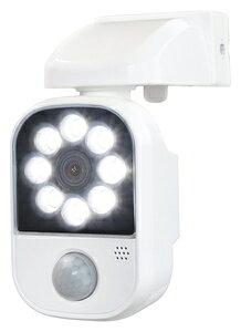 DLC-2T100AR 大進 USB充電式LEDセンサーライト アラーム機能付き DAISHIN [DLC2T100AR]