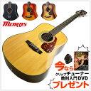 モーリス アコースティックギター Morris M-351 【ドレッドノート(ウェスタン)サイズ スプルース単板】 フォークギター M351 アコギ