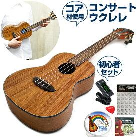 ウクレレ 初心者 セット アヌエヌエ Aqua-CK2 (aNueNue コンサートサイズ) 入門セット
