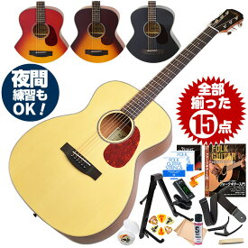 アコースティックギター 初心者セット 15点 アリア Aria-101 (フォーク ギター 初心者 アコギ 入門 セット)