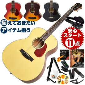 アコースティックギター 初心者セット (ハードケース付属 12点) アリア Aria-101 (フォーク ギター 初心者 アコギ 入門 セット)