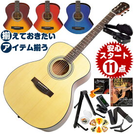 アコースティックギター 初心者セット (ハードケース付属 12点) アリア Aria-201 (フォーク ギター 初心者 アコギ 入門 セット)