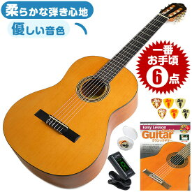 クラシックギター 初心者セット 6点 バレンシア VC204 (クラシック ギター 初心者 入門 セット)