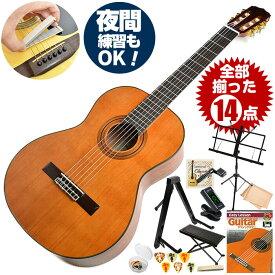 クラシックギター 初心者セット アリア A-20 14点 (Aria セダー単板 入門セット)