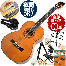 クラシックギター 初心者セット アリア A-20 14点 ハードケース付属 (Aria セダー単板 入門セット)