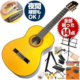 クラシックギター 初心者セット アリア A-30S 14点 (Aria スプルース単板 入門セット)