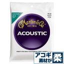 アコースティックギター 弦 マーチン ( Martin ギター弦) M130 (コンパウンド シルク&スティール) (セット弦)