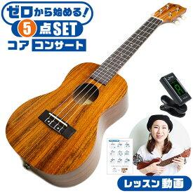 ウクレレ 初心者セット S.ヤイリ YU-C-01K コア材 (S.Yairi ちょっと大きな コンサートサイズ 入門 セット)