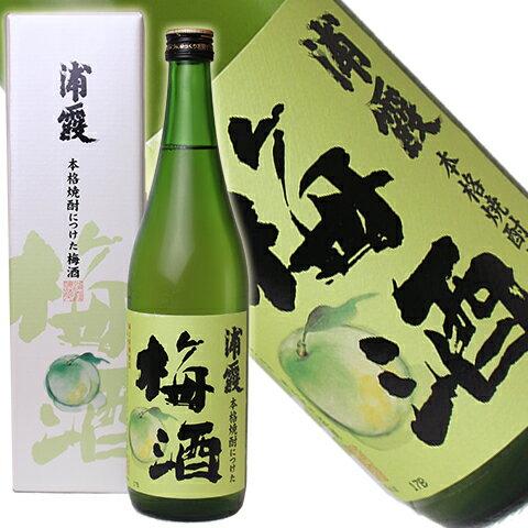 浦霞 本格焼酎につけた梅酒 720ml[宮城県](クール便扱い)