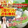 ◆滞無激流緑茶 (たいむげきりゅうりょくちゃ) three set◆