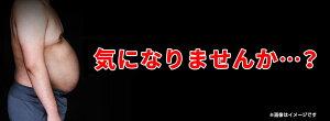 送料無料◆ワンダープレス◆[ゆうパケット対応商品]マッスルシャツ筋肉シャツ加圧シャツ肉体筋肉サポートインナー加圧インナーシステムメンズ引き締め引締姿勢男性スレンダーマッチョサウナスーツ男性用半袖タイプ