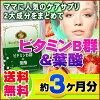 业务用 维生素B群+叶酸 270粒 日本制造 *订单确认以后不接受由于顾客方原因取消订单*