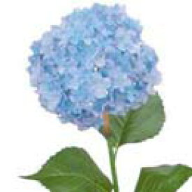 【造花 ・夏の造花 ・あじさい・紫陽花】鎌倉アジサイ・ブルー