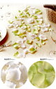 【造花・シルクフラワー】コンビネーション・ローズペタル・ホワイト ライムグリーン(1袋=約100枚)2袋1セットフラワ…