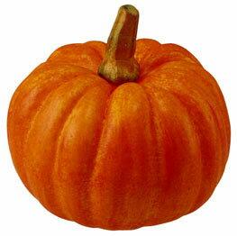 【造花・観葉・秋の造花・枝・秋色・食品サンプル・かぼちゃ・南瓜】ミニパンプキンオレンジ