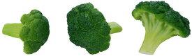 【食品サンプル・果物・野菜・フルーツ・ベジタブル】ブロッコリー(3ケ/パック)(ソフトタッチ)(BC付)