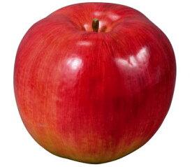 【食品サンプル・果物・野菜・フルーツ・ベジタブル】180mmラージアップル
