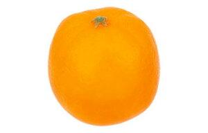 【食品サンプル・果物・野菜・フルーツ・ベジタブル】オレンジ