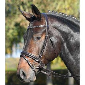 乗馬 頭絡 付属品 額革 送料無料 BUSSE ケンブリッジ 水勒頭絡 セット(手綱付き) 乗馬用品 馬具