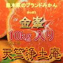 【訳ありみかん】熊本県のブランド訳あり温州みかん『金峯』10kg入り[西濃運輸カンガルー便指定で全国送料¥750]もあります。