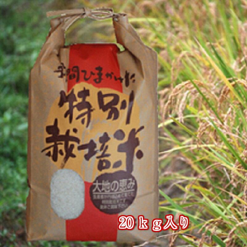 白米/玄米2018年度新米無農薬特別栽培米「天の川」新米20kg入り
