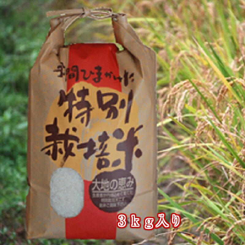 【送料無料】白米/玄米2018年度新米無農薬特別栽培米「天の川」3kg入り