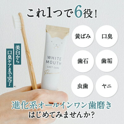 ■ホワイトマウス集中ケア■