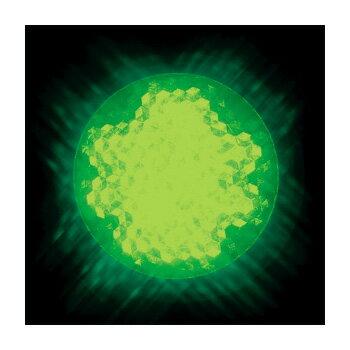 Jefcom・ジェフコム/DENSAN・デンサン LEDサイン球 緑 P18W-E2601-G