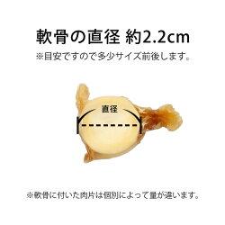 サメ軟骨中ラムネ55g犬用おやつトリーツ国産鮫軟骨100%天然