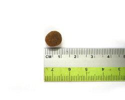 粒のサイズ