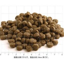 粒サイズ[フィッシュ4ドッグ/FISH4DOGS]コンプリートドッグフードサーモン(小粒)1.5kg