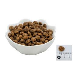 【エクイリブリア】プレミアムドッグドライフード[馬肉]小粒1.5kgキャットフード全犬種用【ポイント10倍】【あす楽対応】