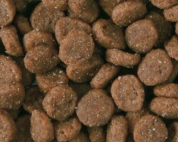 [ナチュラルバランス]グリーンピース&ダックドライキャットフード小袋小分けタイプ/500g(50g×10袋)粒の形状