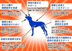ナチュラルバランスホールボディヘルスドッグフードウルトラプレミアム12ポンド/5.45kg<幼犬/子犬/成犬/シニア・高齢犬対応>【送料無料】【smtb-k】【kb】【あす楽対応】【HLS_DU】