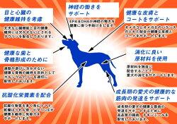 ナチュラルバランスホールボディヘルス犬1.82kg/4ポンド≪小粒≫スモールバイツ正規品ウルトラプレミアムドッグフード【送料無料】【ポイント10倍】【あす楽対応】無添加グルテンフリーグレインフリードライ[リニューアル済み]