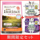 Cat_lid1607