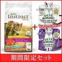 Cat_original1607