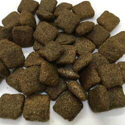 フィッシュワンライト/シニア(サーモン&ポテト)ドッグフード中粒2kg(1kg×2袋)【あす楽対応】