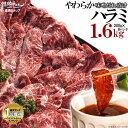 焼肉 ハラミ 超メガ盛セット やわらか ハラミ 味噌だれ漬け(1.6kg)(北海道・沖縄配送は別途送料追加) 焼肉セット 肉 …