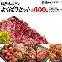 焼肉 バーベキュー 肉 送料無料 情熱ホルモンよくばりセット(計600g)(北海道・沖縄配送時は別途送料追加) BBQ 肉 焼肉…
