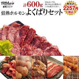 焼肉 バーベキュー 肉 送料無料 情熱ホルモンよくばりセット(計600g)(北海道・沖縄配送時は別途送料追加) BBQ 肉 焼肉セット バーベキューセット BBQセット