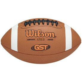 ウィルソン WILSON フットボール GS(GRADESCHOOL) ジュニア キッズ GST TDJ JUNIOR COMPOSITE FOOTBALL GSGRADESCHOOL アウトドア ボール スポーツ アメリカンフットボール 送料無料