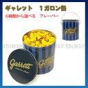 ギャレットポップコーン ギャレット garrett ポップコーン 6種類から選べる 1ガロン缶 アーモンド キャラメル チーズ …