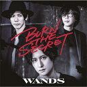 【送料無料】[限定盤]BURN THE SECRET(初回限定盤)/WANDS[CD+DVD]【返品種別A】