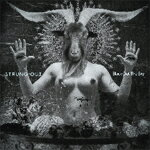 BLACK OUT THE SKY【輸入盤】▼/STRUNG OUT[CD]【返品種別A】