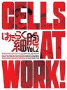 【送料無料】[枚数限定][限定版]はたらく細胞 2(完全生産限定版)/アニメーション[DVD]【返品種別A】